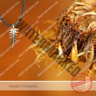 joya espina de eguzkilore maghú