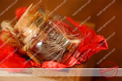 semillas eguzkilore Maghú
